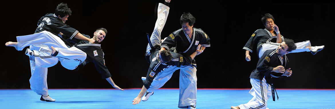 World Hapkimudo Federation